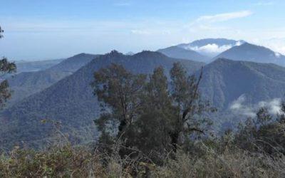 Hoe het Balinese dorpsleven behouden blijft. 5 (2)